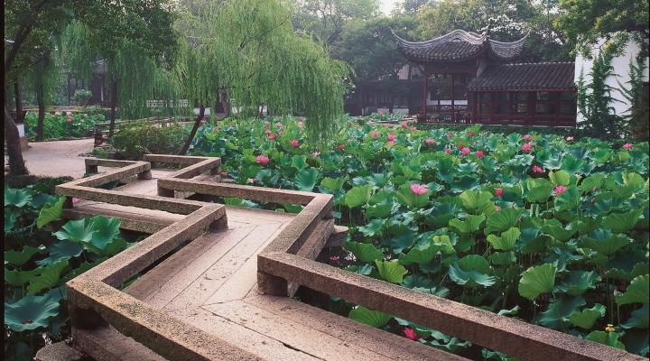 le jardin Zhuozheng