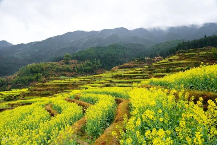 Qu'est-ce qu'à découvrir en Chine au printemps ? - Suite