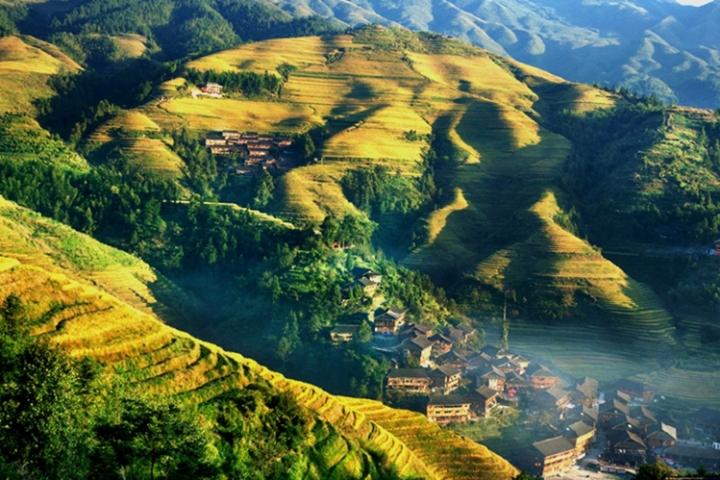 Les rizières en terrasses de Longji