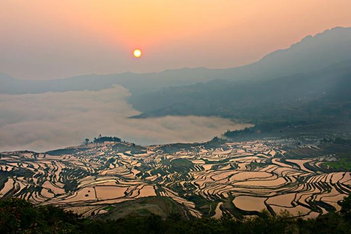 Yunnan Sud-est: rizières en terrasses